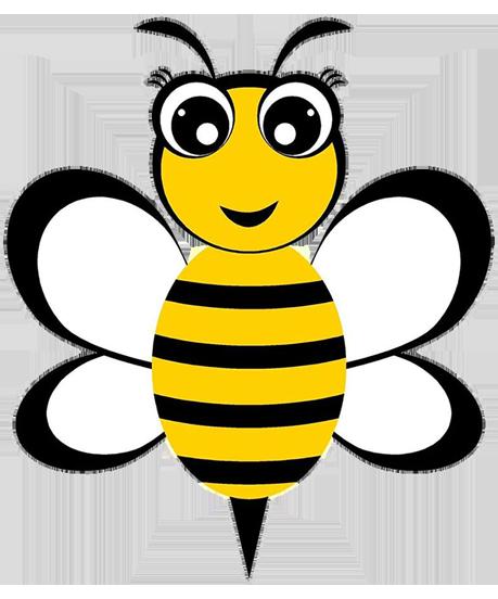 Bee Wise Organics LLC